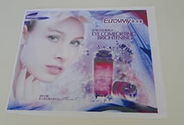 Flag Cloth banner 3 printed by 1.6m (5 feet) eco solvent printer WER-ES160