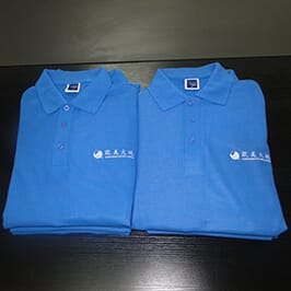 Polo shirt customized printing sample by A3 t-shirt printer WER-E2000T